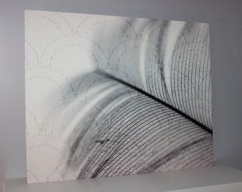 Fine Art Photography Digital Art Stitched Metal Print Close Up Feather 16x12