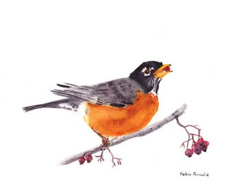Robin 8x10 Watercolor Painting, American robin, Bird,bird painting,nature,bird lover,wildlife,Animal,not a print,made in ohio,bird art