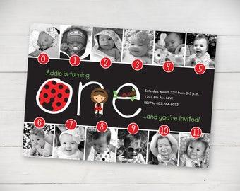 Lady Bug Timeline 1st Birthday Invitation - Digital File
