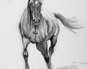 Original horse art equine art energy and movement equine horse ink sketch movement art drawing 'Adelie' by H Irvine