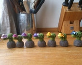 Reserved listing for Colin needle felted miniature turtles