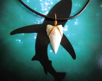 Shark Tooth Necklace, Modern Day White Shark tooth, Leather cord, Copper wire wrapped