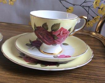 Tuscan plant vintage bone china tea cup trio