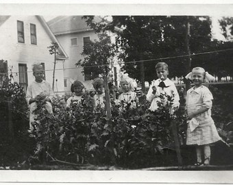 Old Photo Girls and Boys in Garden Flowers Children Photograph Snapshot vintage