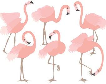 70% OFF SALE Flamingo Clipart - Digital Vector Flamingo, Bird, Exotic, Coral Flamingo Clip Art