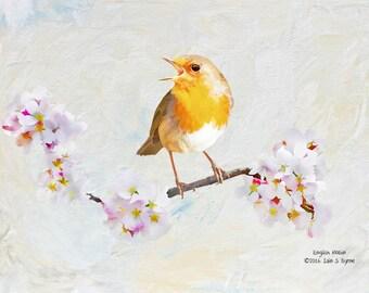 bird print, English robin print, bird art, wildlife print, wildlife art, woodland birds, bird wall art, children's wall art, kids wall art