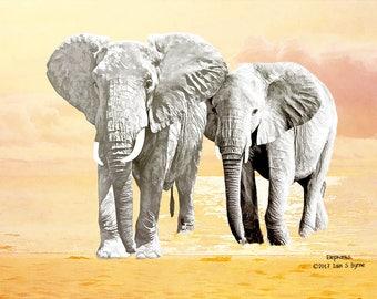 animal art print, elephant print, wildlife art print, wildlife wall art, nature art prints, Iain S Byrne, prints of elephants, wall décor