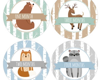 Set of 12 Round Monthly Stickers with Woodland Forest Animals for Baby Boys Photo Props Keepsakes - CDBSMos001