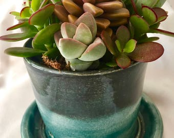 Succulents planted in a handmade ceramic pot for Father's Day,  Handmade ceramic pot