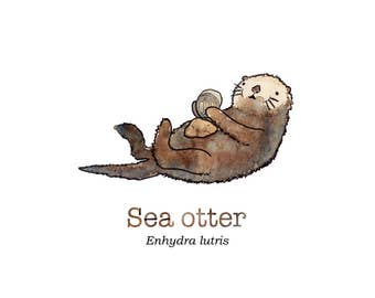 Cute Sea Otter Art print.