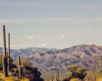 Arizona photograph, landscape photography, saguaro cactus, southwestern decor, southwest landscape, large wall art, mountain photography
