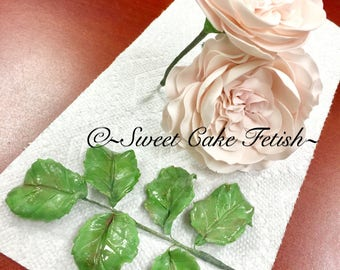 Gumpaste Leaves/Cake Topper/Fondant Leaves/Flower toppers/Sugar flower/sugar leaf topper