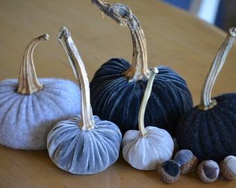 Cool Grays Silk Velvet & Cashmere Pumpkins and Acorns with Real Pumpkin Stems