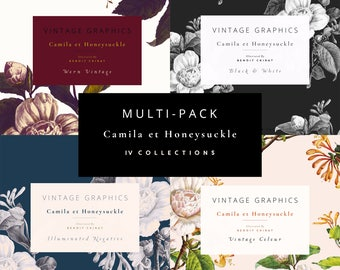 Vintage Clip Art and Graphics - Camila et Honeysuckle - Multi-pack
