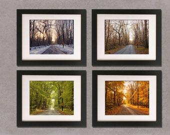 Dead End in Four Seasons: winter, summer, spring, fall, orange, green, New England, woods, country,seasonal decor, four seasons wall decor