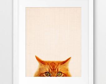 Cat Print, Orange Tabby Cat Print, Cute Cat Photo Print, Beige Color Kitty Print, Animals Wall Art, Nursery Decor, Kids Room Printable Art