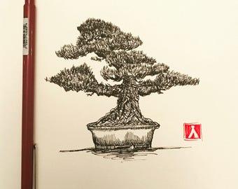 KillerBeeMoto: Original Pen Sketch of a Bonsai Tree