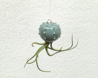 Small hanging vase Cactopus modern ceramic design green sage for air plants shaped cactus for Tillandsia (plant not included)