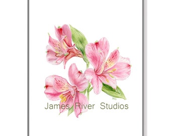 Lily Art Print Lily Painting Lily Print Lily Watercolor Painting Pink Lily Art Print Pink Lilies Painting Lilies Print Lily Wall Art Lilies.