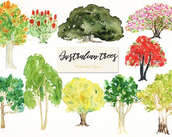 Australian native trees. Watercolor clip art. Digital Watercolours clipart hand drawn. Forest wedding, eucalyptus  logo invitations, ficus.