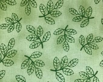 leaves. foliage. plants