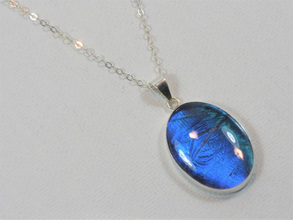 Blue Butterfly Jewelry: Real Blue Morpho Butterfly Wing Jewelry Pendant Necklace