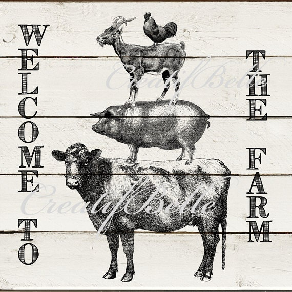 12x12 Inch Vintage Farm Animal Stack On White Wood Instant