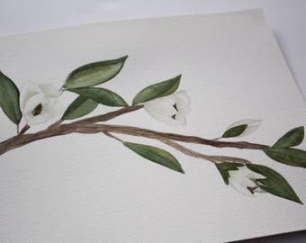 Magnolia Branch - Original Watercolor Painting