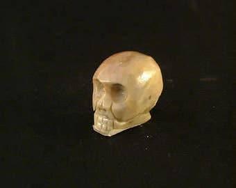 Hand-Carved Soapstone Skull