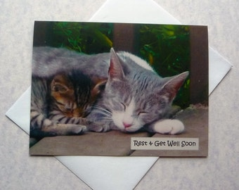 Get Well Note Card featuring resting mama cat and kitten, blank inside, hand made, fine art, 4-1/4x5-1/2, Get Well