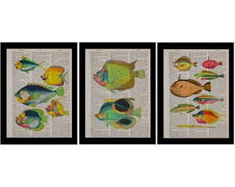 Vintage Fish Print, Set of 3 Dictionary Art Prints, Colorful Fish, Marine Life, Hand Painted Home Decor da1394