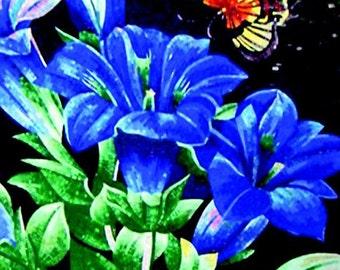 Flower Mosaic Art - Navy Iris
