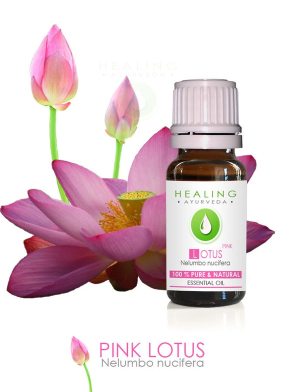 Pink Lotus- 100% Pure Lotus flower essential oil-Nelumbo nucifera-Sacred Louts Oil-Spiritual oil-Healing oil-Aromatherapy (Undiluted)-Chakra