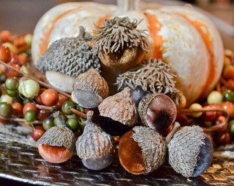 Silk Velvet Acorns in Various Neutral Colors, Real Acorn Caps, Set of 10, Thanksgiving, Fall Decor, Table Centerpiece, Real Acorn Caps