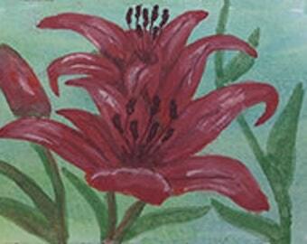 Hot Lilies Card Set