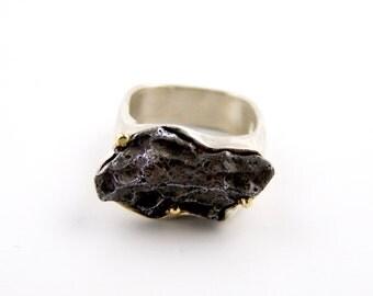 Sikhote-Alin Meteorite Ring