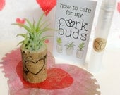 Woodburned Heart Stump Airplant Holder, Succulent, Unique Gift, Mini, Cute, Valentines Day gift, customized, engraved, initials, date