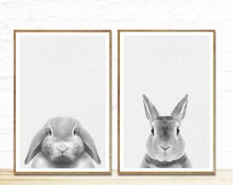 Baby Animal Prints, Woodland Nursery Decor, Rabbit Print, Woodland Nursery Decor, Rabbit Art Print, Bunny ART, Bunny Photo, Nursery Room