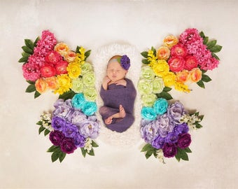 Digital Newborn Backdrop Rainbow Butterfly. One of a kind prop!