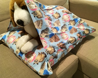Cat Soft Flannel Cozy Cave
