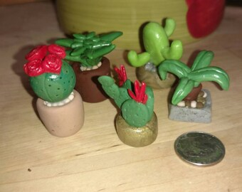 Handmade Polymer Clay Succulents, Cacti, Ferns