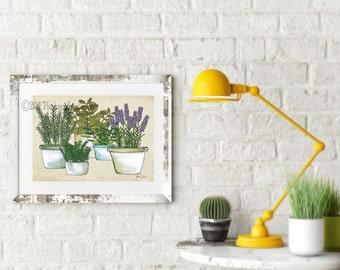 Herb Garden art print. Mixed potted herbs poster.  Garden Herb home decor. Garden wall art. Garden poster.  Garden home decor. Shanni Welsh