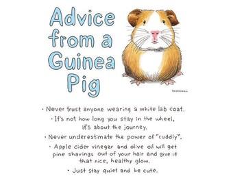 Guinea Pig, Nursing Student, Science Gift, Medical Student Gift, Mindfulness Gift, College Student Gift, Veterinarian Gift, Funny Pet Gift