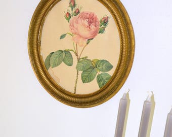 frame, painting, engraving, pink feared in a gilt wood frame, vintage.