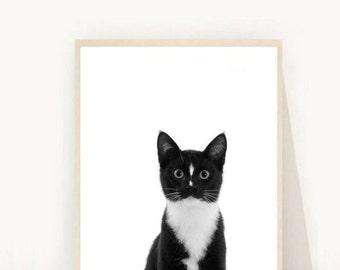 Kitten Print, Cute Cat Print,  Printable Art, Nursery Animals, Kitten Art Print, Cat Print,  Wall Decor, Wall Art, digital Download