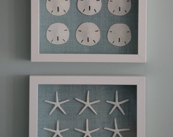 Pair of Shadowboxes, Genuine Sand Dollars and Sea Stars