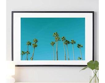Long Beach Palm Trees Sky Photo | photo print | summer vibes | tropical decoration | home decor | palm tree wall art | 11 sizes