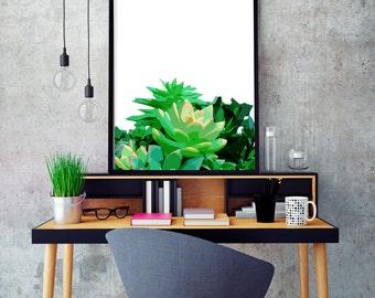 """Modern Wall Art, Mid Century Art, Abstract Print, Succulent Art, Wall Decor, Green Art, Colorful Art, Plant Art, Tropical Art, """"Go Green"""""""