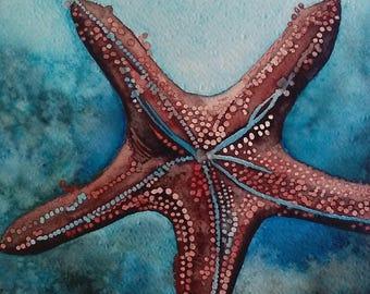 Original Modern Art blue red Marine Watercolour Aquarelle Wall Art Beach Deco Nautic style Nature Starfish underwater Gift for Her