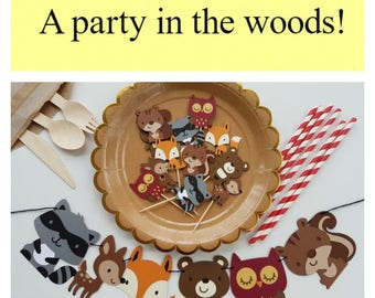 A Party In The Woods! Complete custom party in a box!
